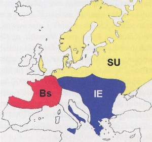 The language situation in Europe around 5500BC. IE = Indo-European languages, Bs = Basque languages, SU = Ugric languages